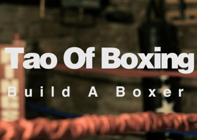 Tao Of Boxing