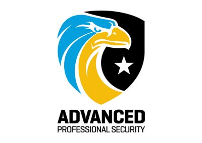 Advanced Professional Security